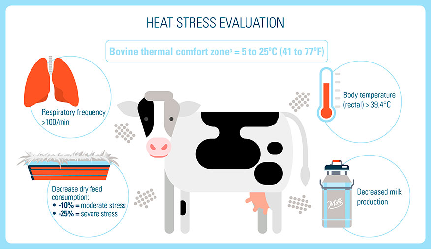 Heat Stress Evaluation