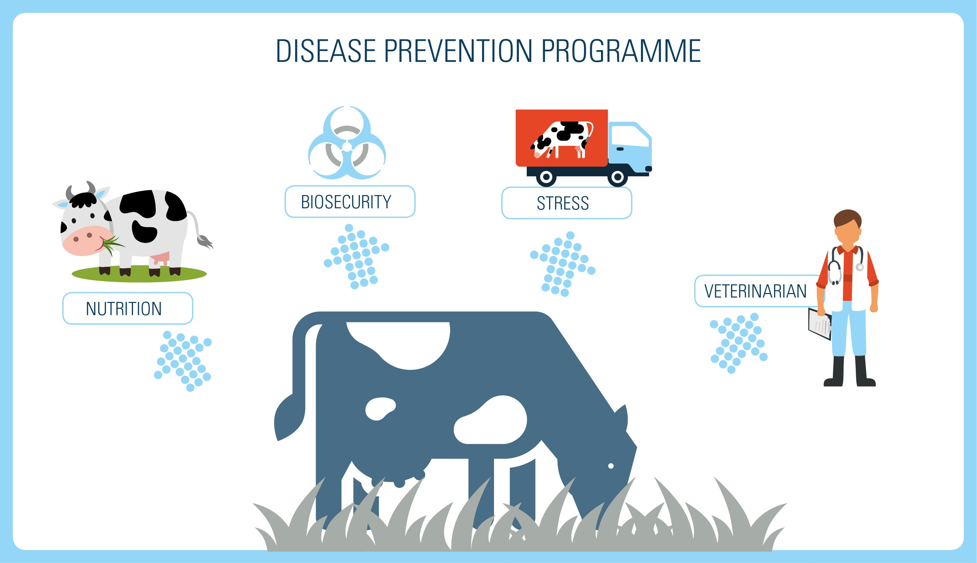 disease prevention programme