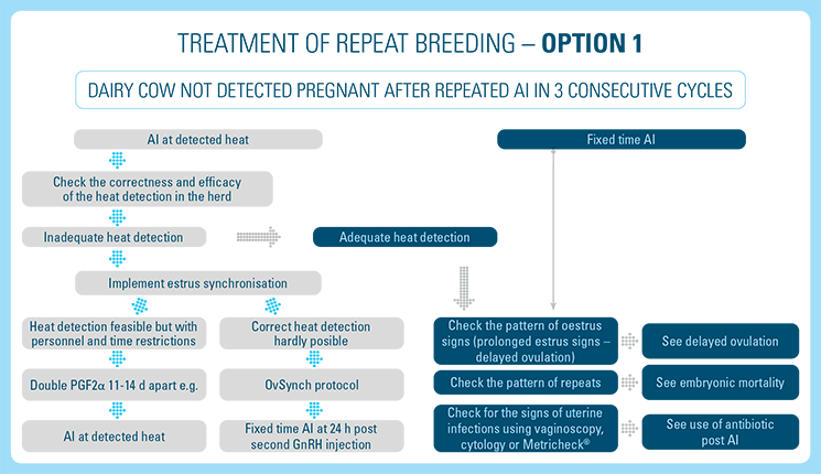 Treatment of Repeat Breeding